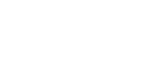 AkzoNobel digital development